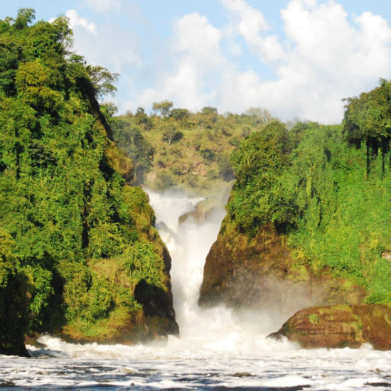 3 Days Wilderness exploration Safari to Murchison falls National park